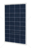 COULEE CL100P6-36 POLIKRISTALNI SOLARNI PANEL